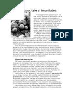 Document Leucocite