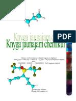 Knyga jaunajam chemikui