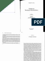 Texto 1 - LEVINE, D Visoes Da Tradicao Socioologica - A Tradicao Americana
