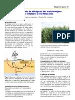 Fertilizacion N maíz forrajero