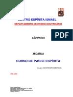 apostila passe.pdf