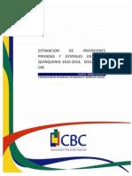 Estimacion_Inversiones_2010-2014_2010-4T