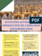 situacin-120620223324-phpapp01