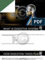 digestivesystem-130721051955-phpapp02