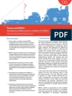 UN-REDD Programme Policy Brief Tenure and REDD+