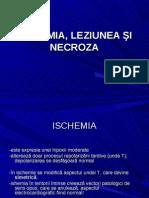 Ischemia Leziunea Si Necroza-powerpoint