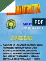 K.17b RS K17 - Pendarahan Antepartum REV