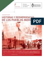 Reemergencia Pueblos Indigenas