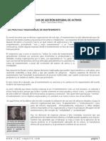 CAP Articulo Modelos Gestion Activos 14 Dic 2012