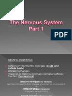 Nervous System 1 2013