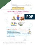 Produccion de Textos Instructivos