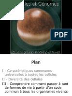 Cours-Medecine Info-Histologie-L Information Genetique Chez Les Eucaryotes