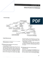 Photosynthesis Study Guide Questions