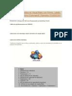 Ejercicios Resueltos en Visual Basic Con Forms