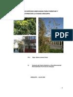 Especies Adecuadas Para Forestar Arequipa