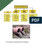 Los Problemas Ambientales de La Patagonia