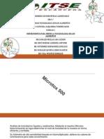 Instrumentos de Medicion de Toxicidad de Alimentos_iima-7_equipo Cruz Medina