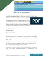 Algebra de Polinomios