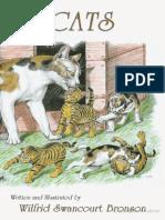 Cats - Bronson
