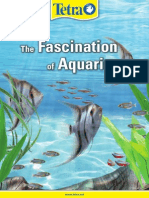 Fascinationaquaristic
