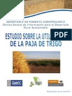 Paja Trigo (1)