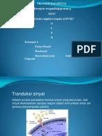 Protein G Farmakologi(Kel.4)