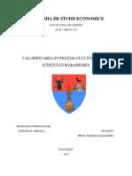 Valorificarea potentialului turistic al judetului Maramures