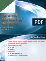 surgicalanatomyoftheneck-131127094050-phpapp02