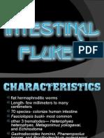 Intestinal Flukes Ppt