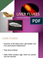 Liver Flukesb