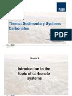 Sedimentary Systems Carbonates PDF Final