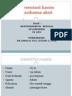76704785 Glaukoma Akut Power Point