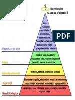 Soc Piramida Lui Maslow