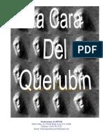 Libro Car Adel Querubin