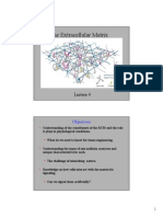 The Extracellular Matrix PPT.pdf