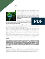 Flora y Fauna de Costa Rica