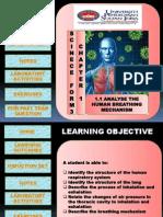 Multimedia Courseware