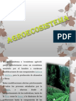 Agro Eco Sistema