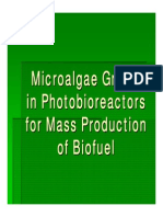 Algae to Energy_powerpoint