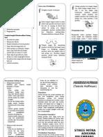 Leaflet - Perawatan Payudara
