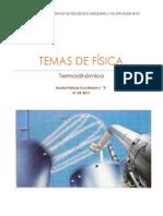 TEMAS DE FÍSICA.docx