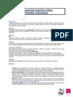 Informacion Practica Sobre Flandes y Bruselas