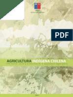 agricultura_indigena_2011
