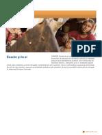 UNHCR Statistici