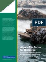 58889480 IEA ExCo64 Algae the Future for Bioenergy Summary and Conclusions