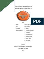 Laporan Praktikum  Anorganik II