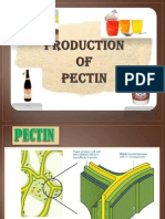 Production of Pectin