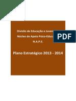 Plano Estrategico 2013 2014 NAPE