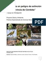 Investigación sobre ANIMALES EN EXTINCIÓN