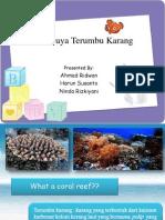 Terumbu Karang_PSWDPL